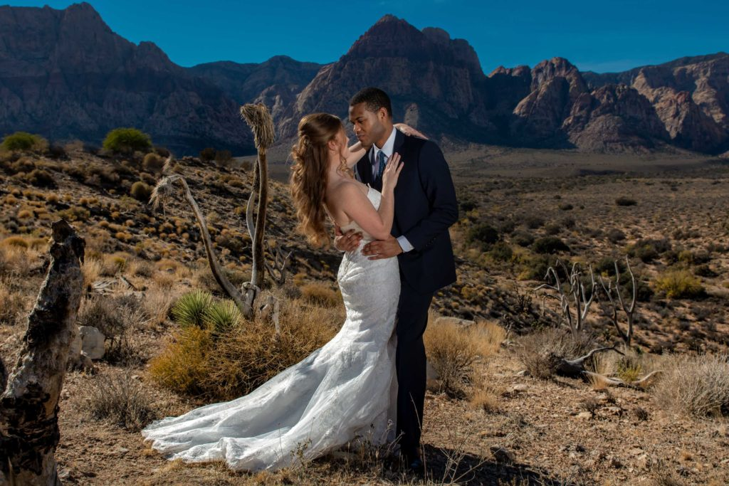 Desert elopement photos | Las Vegas elopement photographer